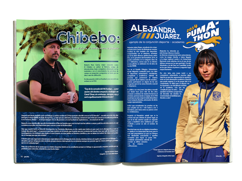 chibebo