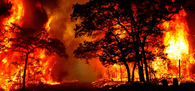 incendio_supervivencia_ho-750x350