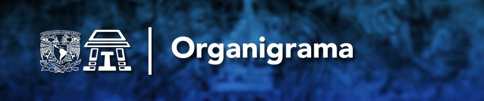 organigrama_head